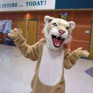 Lasalle wildcat mascot
