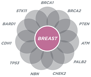 Is breast cancer hereditary - Answerscom