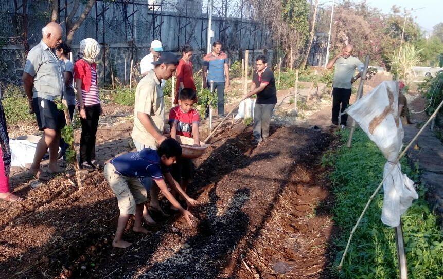 https://s3.amazonaws.com/myshala/Millennium_National_School_Website/images/2016-2017/Website/Sustainability/Urban_Farming.jpg