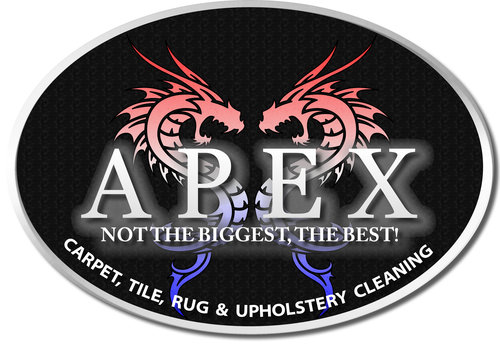 Apex_logo_in_jpeg