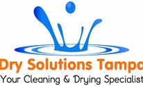 Dry Solutions Tampa: Carpet Cleaning