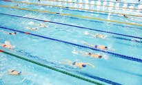 Sigma Performance Swimming: Swimming Lessons