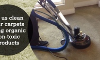 Home Spa Carpet Cleaning- Floor Specialists: Carpet Cleaning