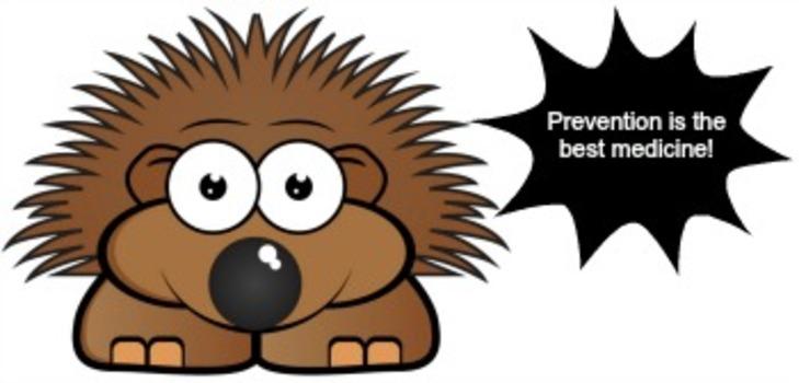 Porcupine_prevention