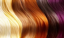 Shear Delight: Hair Coloring