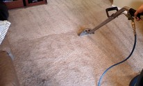 Lifestyle Carpet & Upholstery Cleaning: Carpet Cleaning