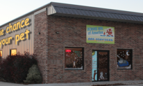 Doggie Spa Of America: Dog Grooming