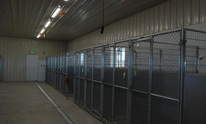 Rocky Mountain Kennels, Inc.: Dog Grooming