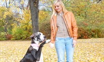Love Your Pet Again: Dog Training