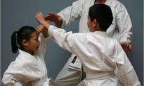 Silicon Valley Karate, LLC: Personal Training