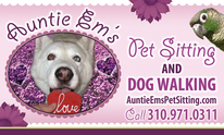 Auntie Em's Pet Sitting & Dog Walking: Dog Walking