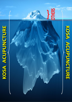 Iceberg_a