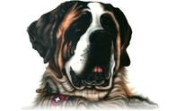 St. Bernard's Grooming: Dog Grooming