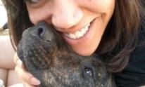 Wigglewag Dog Walking & Pet Sitting Services: Dog Walking