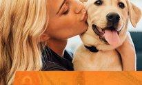 Dogtopia Sandbox: Dog Daycare