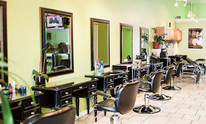 Hair Traffic Salon: Hair Coloring