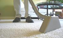 Maylina's Carpet Steam Cleaning: Carpet Cleaning