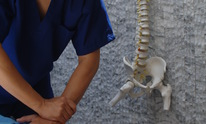 THE Chiropractic Care: Chiropractic Treatment