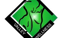 Valley Wellness Health Group: Chiropractic Treatment