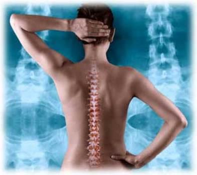 Chiropractic-spine_1