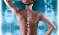 Chiropractic For Everyone: Chiropractic Treatment