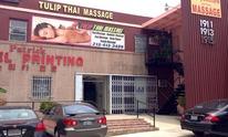 Tulip Thai Massage: Massage Therapy