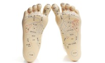 Squirrel Hill Physical Therapy Center: Acupuncture