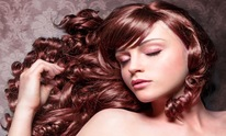 Flipped Out Hair Salon: Hair Coloring