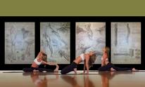 Zende Fitness: Martial Arts