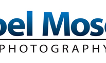 Joel Moses Photography: Photography