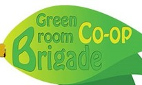 Green Broom Brigade: House Cleaning