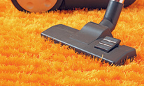 South Alabama Carpet Care: Carpet Cleaning