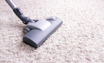 Steam Right: Carpet Cleaning