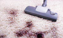 Professional Cleaning Services: Carpet Cleaning