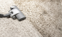 Try Cleaning: Carpet Cleaning
