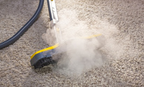 A Healthy Home: Carpet Cleaning