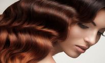 Vogue Hair Studio: Conditioning Treatment