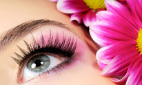 Escape Day Spa: Eyelash Extensions