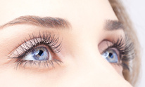Salon Studio Nails: Eyelash Extensions