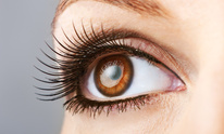 Panache Hair Salon: Eyelash Extensions