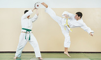 Ehrmantraut's Academy of Martial Arts: Martial Arts