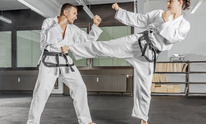 Championship Tae Kwon DO: Martial Arts
