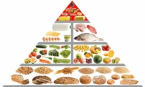 J.S. Training Systems Inc: Nutritional Counseling