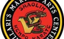 Villari's Martial Arts: Martial Arts