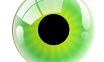Eye Care Associates Inc: Eye Exam