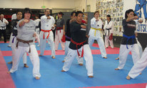 Reflex & Reaction Martial Arts: Martial Arts