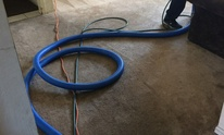California Steemers: Carpet Cleaning