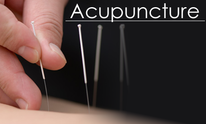 Georgetown Acupuncture And Herbs: Massage Therapy