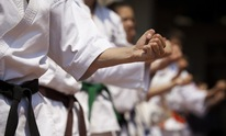 International Karate: Martial Arts