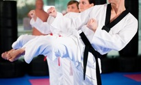 Beverly Hills Karate Academy: Martial Arts